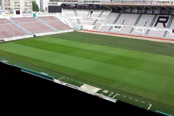 Pose de gazon naturel <br> Stade Mayol à Toulon