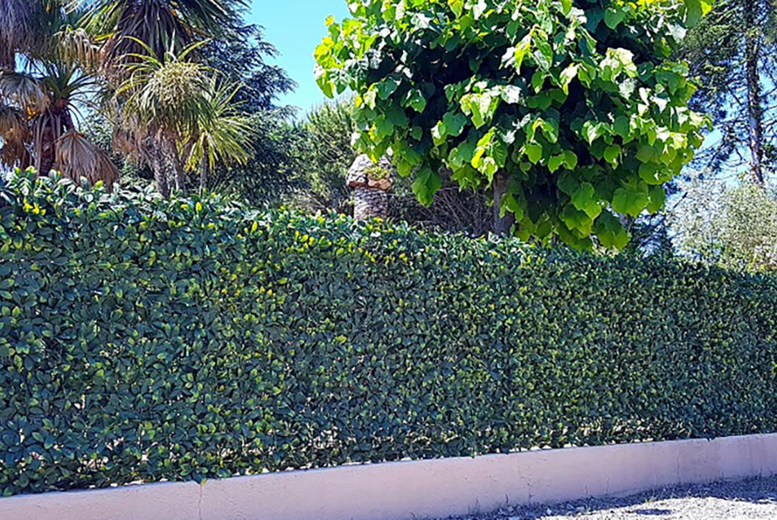 Feuillage artificiel / mur végétaux