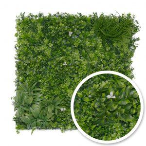 Mur végétalisé - LISERON BLANC